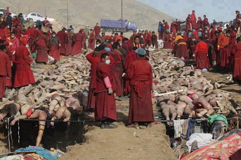 muslim-massacre-burma